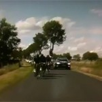 tour de france 150x150 Bad driving on the Tour de France