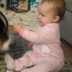 Baby shares cheerio with dog 150x150 Baby shares cheerio with dog