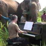 Beethoven for Elephants 150x150 Meanwhile, in Thailand